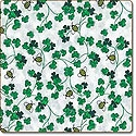 Bees_Clovers