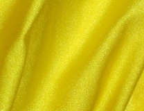15_lemon_spandex
